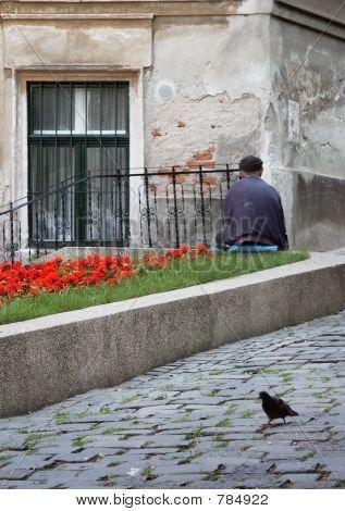 Beggar and pigeon