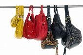 picture of diva  - different bag for females on hangers - JPG