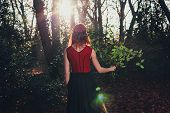 picture of holly  - A young woman is standing in the forest with a bunch of holly in her hand - JPG