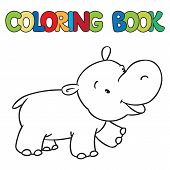 picture of hippopotamus  - Coloring book or coloring picture of little funny hippo or hippopotamus - JPG