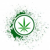 foto of cannabis  - colorful illustration with cannabis on white background - JPG