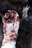 picture of mummy  - Hand of mummy outdoors - JPG