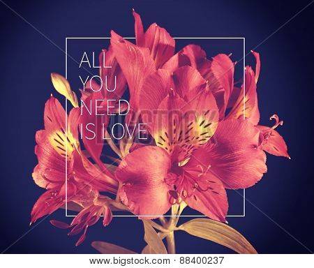 Love Quote Vintage Flower Background