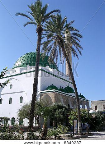 Akko El-jazzr Mosque And Palm Tree 2003