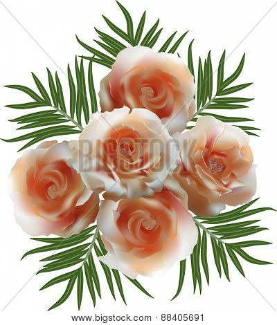 illustration with bunch of rose flowers isolated on white background