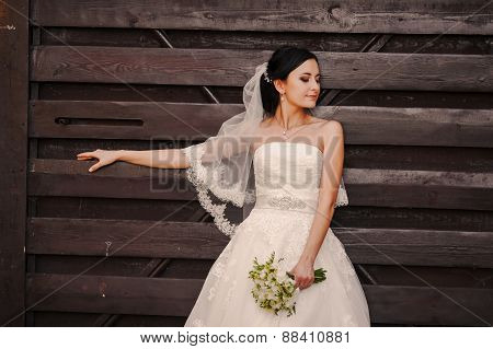 Bride At  Wooden Wall