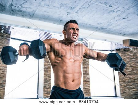 Muscular man workout with dumbbells at gym