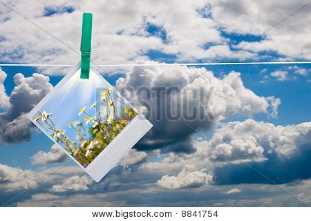Blue Sky With Hanging Photo Of Flowers