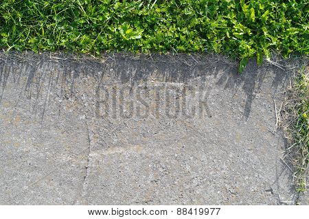 Concrete And Grass Texture