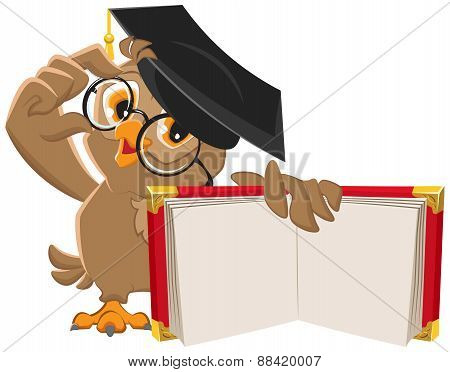 Owl holding open book