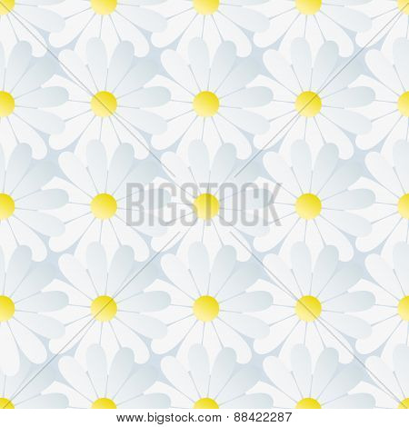Spring Background Seamless Pattern With White Chamomile
