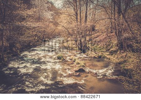 Fast river in forest