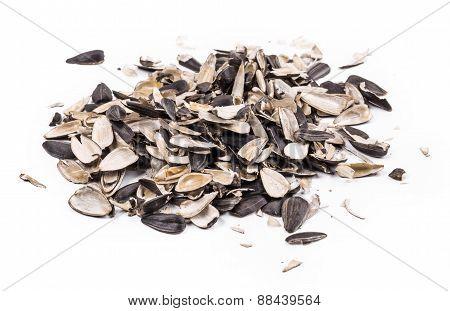 Bunch of sunflower seeds close up.