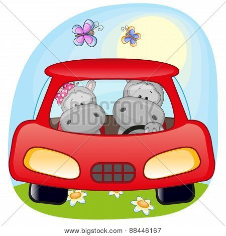 Two Hippos In A Car