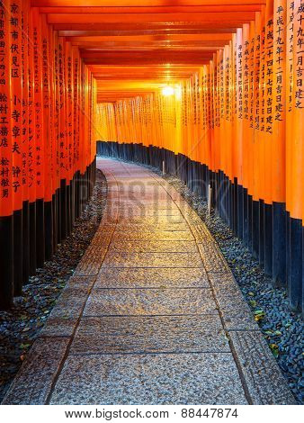 Torii Gates In Fushimi Inari Shrine, Kyoto, Japan