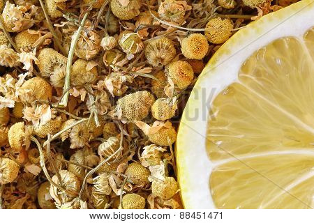 chamomile and lemon