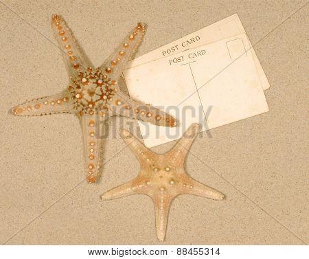Seashore Scene With Starfish And Postcards