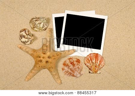 Seashore Scene With Starfish And Polaroids