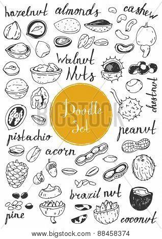 Big doodle set - Nuts