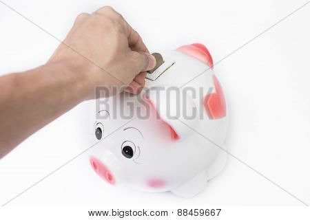 Male Hand Putting A Coin Into Piggy Bank No White Background
