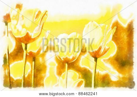 Watercolor Akvarel Paint Effect Of Spring Yellow Tulips