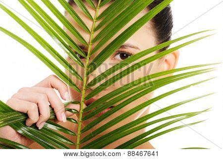 Portrait of nude woman behind palm leaf.