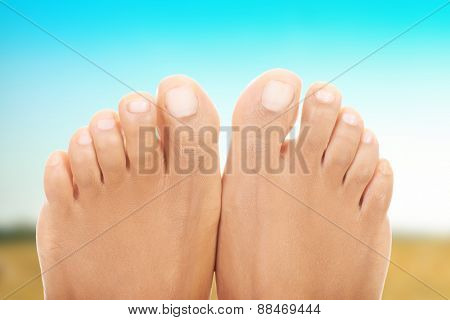 Healthy smooth caucasian female feet.
