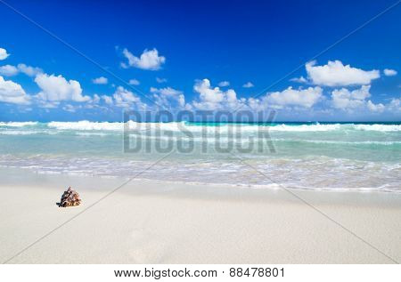 beach and beautiful tropical sea