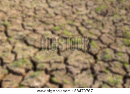 Blurred Background Cracked Soil