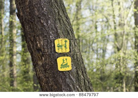 Tourist Sign On A Tree In The Forest