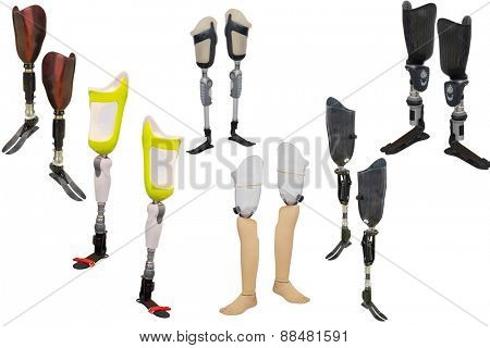 walking sticks under thew white background