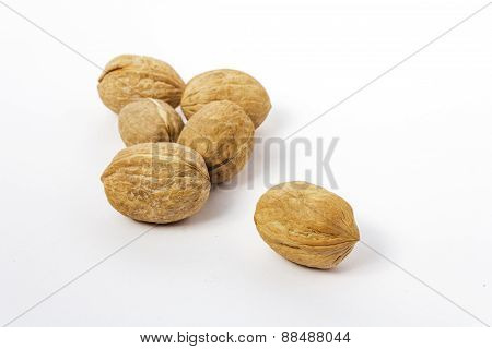 Group Of Walnut And Nutshell On White Background