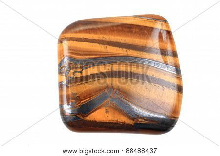 Tiger Eye Isolated