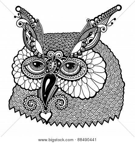 black and white owl head