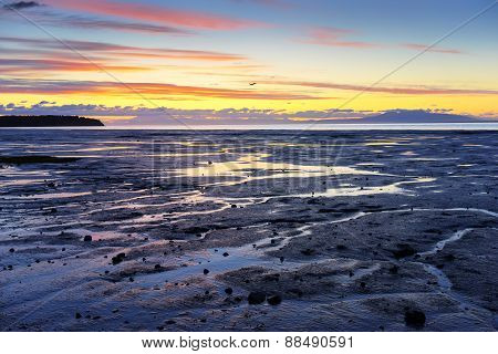 Alaska Seashore - Sunset (Plane in the Middle of the Frame)