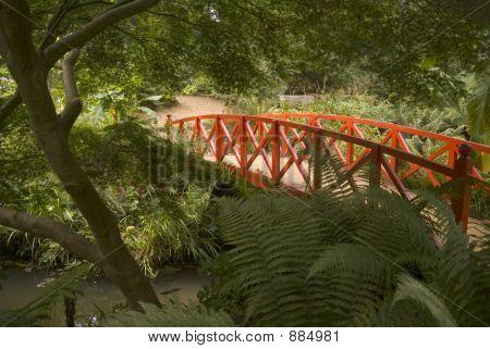 England Dorset Abbotsbury Subtropical Gardens