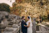 image of yellow castle  - beautiful stylish elegant charming loving couple in the castle - JPG