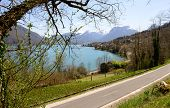 stock photo of annecy  - view of Lake of Annecy in France with the bike path - JPG