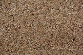 pic of turn-up  - Seaside sand that with close - JPG