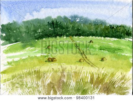 watercolor field