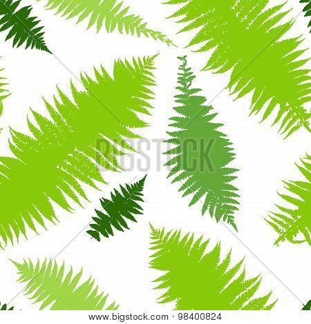Vector illustration of green dry fern seamless pattern