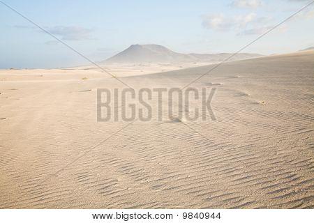 Dunas de Corralejo