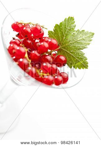 Currants And Leaf In Wine Glass
