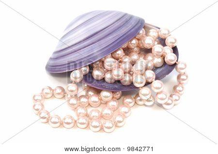 Seashell And Pearls