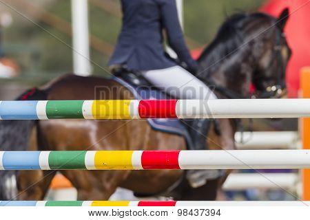 Horse Rider Poles