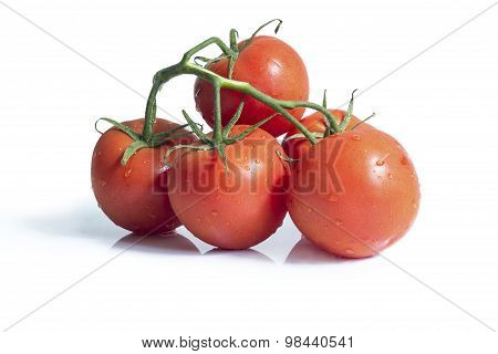Beautiful, fresh twig tomatoes on a white background