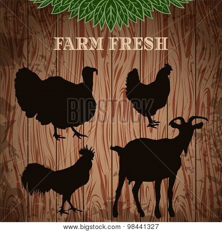 vintage poster fresh farm with silhouettes of turkey, chicken, rooster and goat on the grunge wood b
