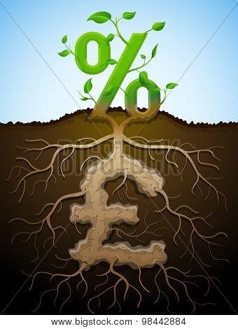 Growing Percent Sign As Plant With Leaves And Pound Sign As Root