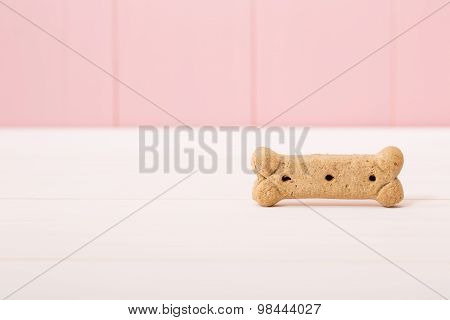 Bone Shaped Dog Treat