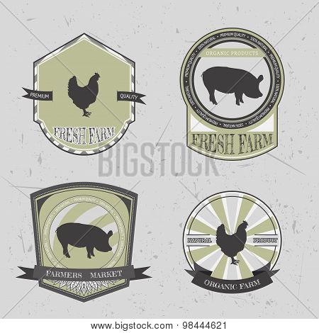 organic farm fresh. Vintage chalk labels and badges with pig and chicken on grunge background. Hand